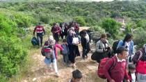 Çanakkale'de 53 Düzensiz Göçmen Yakalandı