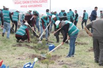 Hükümlüler 'Adalet Ormanı'na Fidan Dikti