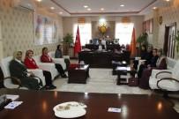 KAYHAN - KADEM Yönetiminden Türkmenoğlu'na Ziyaret