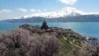 AKDAMAR KILISESI - Akdamar Adası Şimdi Başka Güzel