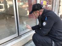 MAHSUR KALDI - Dükkanda Mahsur Kalan Kedi İçin Kurtarma Operasyonu