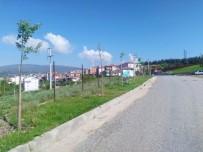 İLKAY GÜNDOĞAN - Dursunbey'de Yeşil Seferberlik