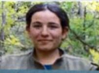 ZILAN - Tunceli'de 4 Terörist Öldürüldü