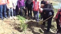 Yüksekova'da '12 Mayıs Hatıra Ormanı' Oluşturuldu