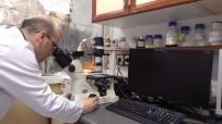 Bartın Üniversitesi Araştırma Görevlisi Fulbright Doktora Bursu Kazandı