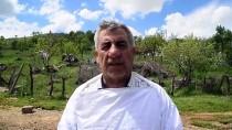 YAĞAN - Karakovan Balı Üreticilerinin Yayla Hazırlığı