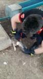 Başı Şişeye Sıkışan Köpeği İtfaiye Kurtardı