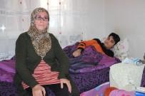 (Özel) Cam Kemik Hastası Anne Ve Oğlu Seslerinin Duyulmasını Bekliyor