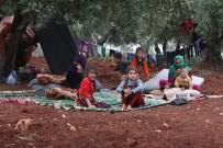 YARDIM MALZEMESİ - Bombardımandan Kaçan Siviller Zeytinliklere Sığındı
