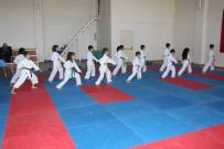 KARATE - Gençlik Haftası Karate Turnuvası Yapıldı