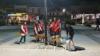 Genç Kızılaycılar Sokak Hayvanlarını Unutmadı
