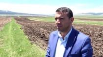 YAĞAN - Karlar Geç Eriyince Çiftçilik De Gecikmeli Başladı