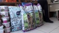 Kiraladığı Araziye Sokak Köpekleri İçin Barınak Kurdu
