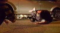 Otomobilin Altında Sıkışan Köpek Kurtarıldı