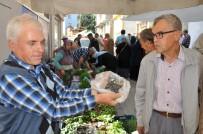 YERLİ TOHUM - (Özel) 150 Yıllık Tohumla Pırasa Üretiyorlar