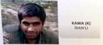 Giresun'da PKK'lı Terorist Teslim Oldu