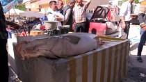 KARASU NEHRİ - Karasu Nehri'nde 83 Kilogram Ağırlığında Turna Balığı Yakalandı