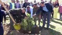 Yüksekova'da 'Adalet Ormanı' Oluşturuldu