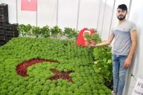 Manisalılar Çiçek Festivaline Büyük İlgi Gösterdi
