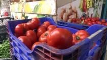 UKRAYNA - Batı Akdeniz 4 Ayda 62 Milyon Dolarlık Domates İhraç Etti