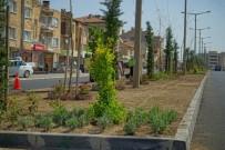 Nevşehir'de Binlerce Çiçek Ve Ağaç Toprakla Buluşturuluyor