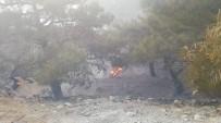 Ormanlık Alanda Korkutan Yangın