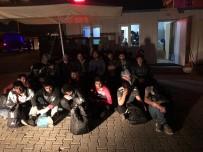 KAÇAK GÖÇMEN - Tekirdağ'da 27 Kaçak Göçmen Yakalandı