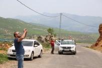 YABAN KEÇİSİ - Dağ Keçileri Yola İndi, Onları Görenler Cep Telefonuna Sarıldı