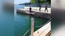 Denizdeki Köpeği Vatandaşlar Kurtardı