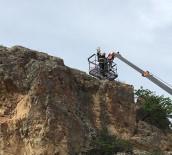 CUMHURIYET - Kayalıklarda Mahsur Kalan Kedi Kurtarıldı