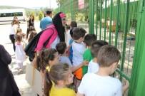Anaokulu Öğrencileri Sokak Hayvanları Barınağını Ziyaret Etti