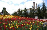 LALE SOĞANI - Büyükşehir'den Erzurum'a Estetik Dokunuş