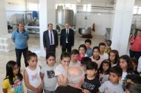 FARUK GÜNAY - Erzincan'da Dünya Süt Günü Kutlandı