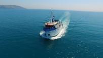 Karadeniz'deki Yunus Popülasyonu Araştırılıyor