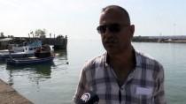 AVCILIK - Kıyı Balıkçıları Rotalarını Lüfer Ve Çinekopa Çevirdi