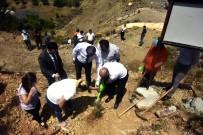 Şehit Halil İbrahim Şık Hatıra Ormanı'na Fidan Dikildi