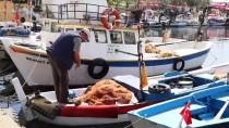 Taze Balık, Küçük Tekne Balıkçılarından