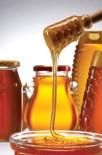 Zeytinyağı Teşvik Sistemi Çam Balı İçin Model Alınabilir