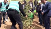 Bitlis'te 'Adalet Ormanı' Oluşturuldu