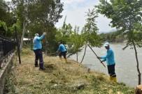 Ceyhan Nehri Kıyıları Bakıma Alındı