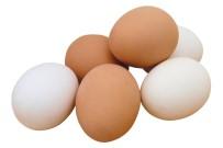HOLLANDA - Irak Yumurta İthalatını Durdurdu, Yumurta Üreticisi Zorda