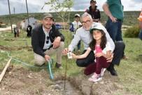 Oklubalı'nda Artık Her Öğrencinin Bir Dikili Ağacı Var