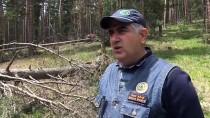 Sert Geçen Kışta Zarar Gören Ağaçlar Ekonomiye Kazandırılıyor