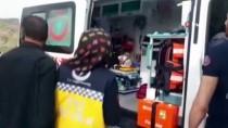 YOLCU MİNİBÜSÜ - Siirt'te Trafik Kazası Açıklaması 9 Yaralı
