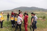 YOLCU MİNİBÜSÜ - Siirt'te Yolcu Minibüsü Takla Attı Açıklaması 9 Yaralı