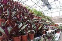 Yeşil Alan Miktarıyla Rekor Kıran Kocasinan'da Parklar Rengarenk