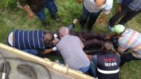 Bursa'da Traktör Kazası Açıklaması 1 Ölü