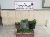 Karaman'da Uyuşturucu Operasyonu Açıklaması 2 Gözaltı