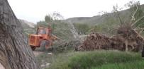 Sivas'ta Kuvvetli Rüzgar Ağaçları Kökünden Söktü