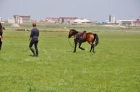 Kars'ta, At Yarışları Yapıldı